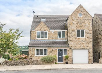 Thumbnail 6 bed detached house for sale in Stocks Green Drive, Sheffield
