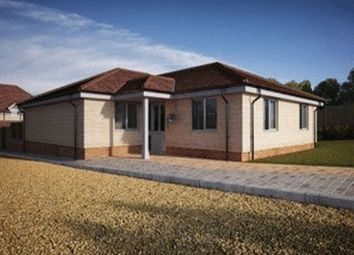 Thumbnail 3 bed detached bungalow for sale in London Road, Clanfield, Waterlooville