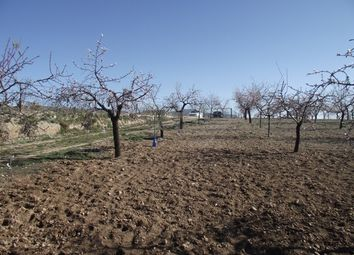 Thumbnail Land for sale in Cela, Tíjola, Almería, Andalusia, Spain