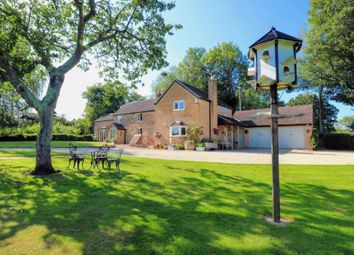 Thumbnail 4 bed cottage for sale in Gorsley, Ross-On-Wye