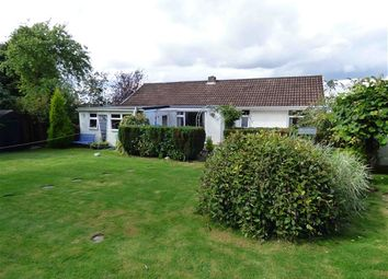 Thumbnail 4 bed detached bungalow for sale in Crossways, Ruardean
