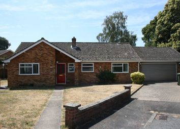 Thumbnail 3 bed detached bungalow to rent in Monksgate, Thetford