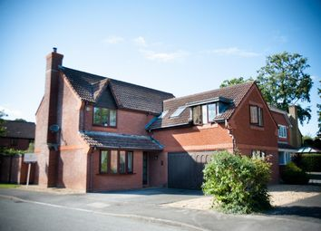 Thumbnail 5 bed detached house for sale in Hurricane Drive, Rownhams, Southampton