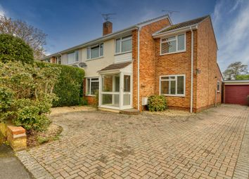 Thumbnail 4 bed semi-detached house for sale in Manor Orchard, Taunton