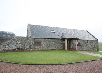 Thumbnail 4 bed detached house to rent in Craighaar, Auqharney, Hatton, Peterhead