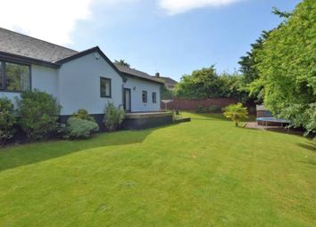 Thumbnail 5 bedroom detached house to rent in Balls Farm Road, St. Thomas, Exeter