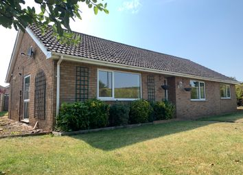 Thumbnail 3 bed detached house to rent in Folly Road, Mildenhall, Mildenhall, Bury St. Edmunds