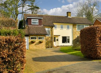 Thumbnail 4 bed detached house for sale in Blackstone Close, Redhill