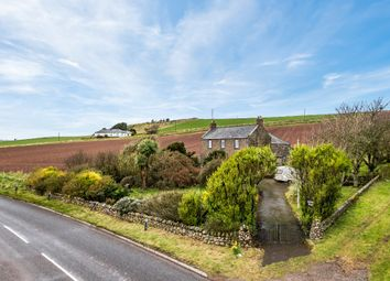 Thumbnail 4 bed detached house for sale in Benholm, Montrose, Angus