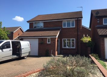 Thumbnail 4 bed detached house to rent in Columbine Mews, Stanway, Colchester