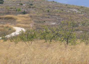 Thumbnail Land for sale in 30529 Cañada Del Trigo, Murcia, Spain