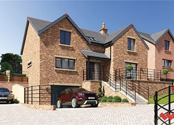 Thumbnail 4 bedroom detached house for sale in Blossom Hill, Lazonby, Penrith, Cumbria