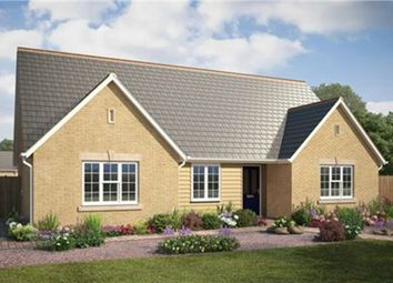 Thumbnail 4 bed detached bungalow for sale in Rowan Close, Haddenham, Ely