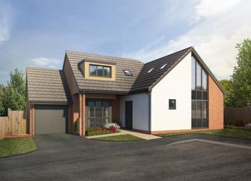 Thumbnail 4 bed bungalow for sale in Seaton, Devon