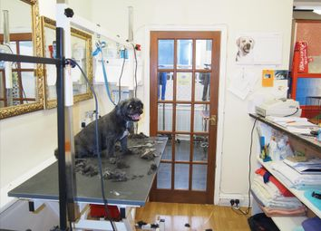 Thumbnail Retail premises for sale in Pets, Supplies & Services YO15, East Yorkshire