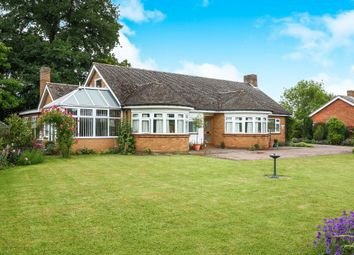 Thumbnail 3 bed detached bungalow for sale in Norwich Street, Hingham, Norwich