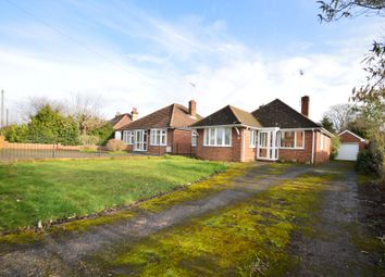 Thumbnail 3 bed detached bungalow for sale in Belvedere Road, Ipswich