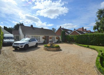 Thumbnail 3 bedroom detached bungalow for sale in Perry Road, Buckden, St Neots, Cambridgeshire