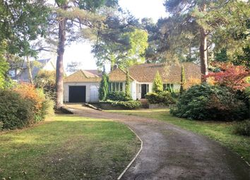 Thumbnail 4 bedroom detached house to rent in Curley Hill Road, Lightwater