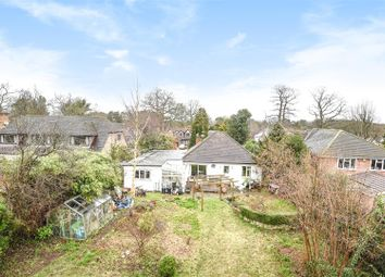 Thumbnail 3 bed detached bungalow for sale in Nine Mile Ride, Finchampstead, Berkshire