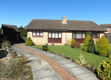 Thumbnail 2 bed semi-detached house to rent in Bewley Grove, Peterlee, Durham