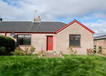 Thumbnail 3 bed semi-detached bungalow to rent in Keithick Farm, Coupar Angus