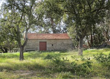 Thumbnail Farm for sale in Penamacor, Penamacor, Castelo Branco, Central Portugal
