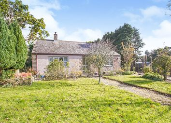 Thumbnail 3 bed bungalow for sale in Horsedowns, Praze, Camborne, Cornwall