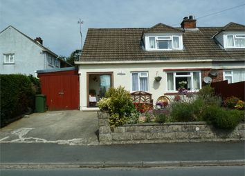 Thumbnail 2 bed semi-detached bungalow for sale in Maesyderi, Llechryd, Cardigan, Ceredigion