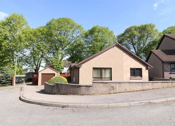 3 bed detached bungalow for sale in Pond Park Place, Elgin, Moray IV30