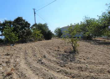 Thumbnail Land for sale in 8150 São Brás De Alportel, Portugal