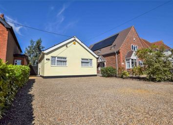 Thumbnail 3 bed detached bungalow for sale in School Road, Copford, Colchester, Essex