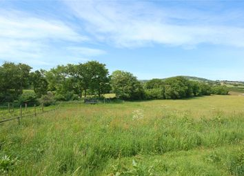 Thumbnail 5 bed detached house for sale in Long Cross, Shaftesbury, Dorset