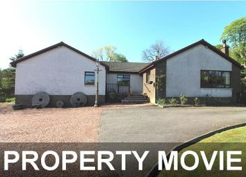 Thumbnail 4 bed detached bungalow for sale in Burniebrae House, Chapelhall