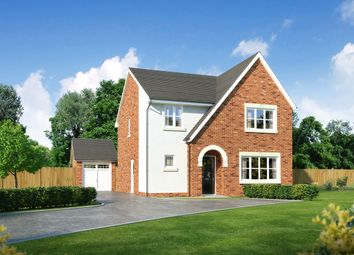 """Thumbnail 4 bed detached house for sale in """"Hawthorne"""" at Church Road, Warton, Preston"""