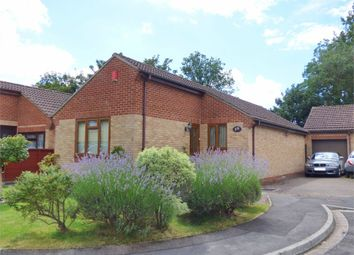 Thumbnail 3 bed detached bungalow for sale in Freshland Way, Kingswood, Bristol