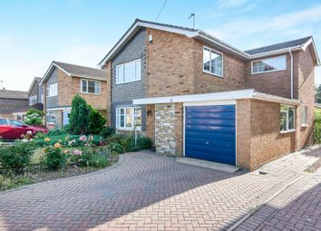 Thumbnail 4 bed detached house for sale in The Warren, Old Catton, Norwich