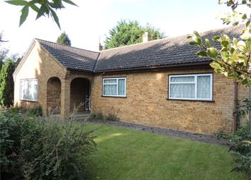 Thumbnail 3 bedroom detached bungalow for sale in Scotts Lane, Brookville, Thetford