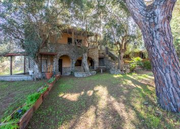 Thumbnail 5 bed town house for sale in Podere Venelle, Via Della Collacchia, 58027 Ribolla Gr, Italy