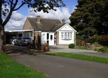 Thumbnail 2 bed detached bungalow for sale in Holdenby Road, East Haddon, Northampton