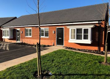 Thumbnail 2 bed semi-detached bungalow to rent in Wilding Drive, Crewe