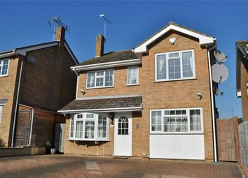 Thumbnail 4 bedroom detached house for sale in Petersfield, Chelmsford, Essex