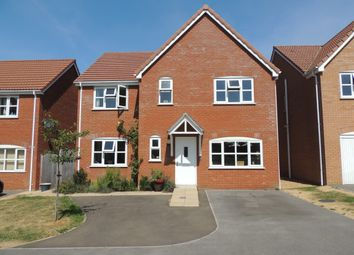 Thumbnail 4 bed detached house to rent in Stallion Close, Downham Market