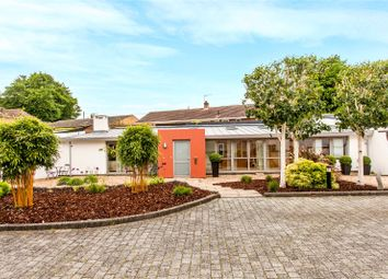 Thumbnail 2 bed detached bungalow for sale in Dean Lane, Winchester, Hampshire