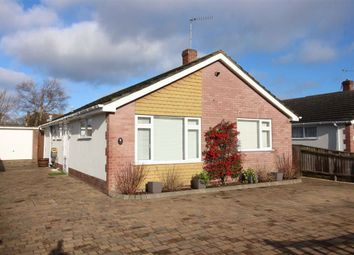 3 bed detached bungalow for sale in Rosewood Gardens, New Milton BH25