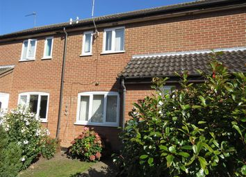Thumbnail 3 bed terraced house to rent in Pursehouse Way, Diss