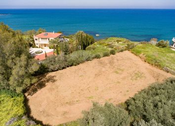 Thumbnail Land for sale in Pomos, Polis, Cy