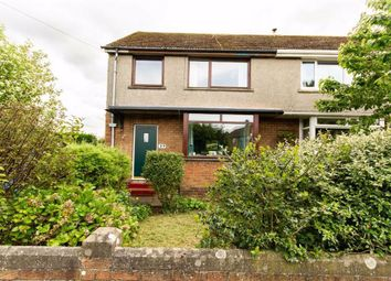 Thumbnail 4 bed semi-detached house for sale in Westfield Avenue, Berwick-Upon-Tweed, Northumberland