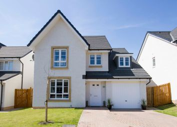Thumbnail 4 bed detached house for sale in Golspie Street, Kirkcaldy