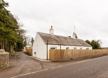 Thumbnail 3 bed semi-detached house to rent in Errol, Perth, Perthshire